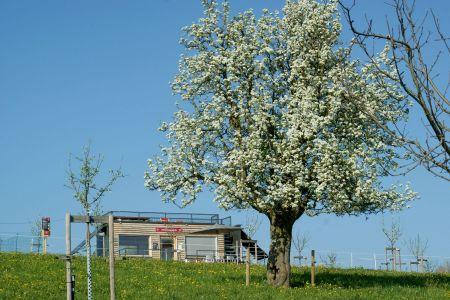 Wiesenwagen Frühling Archehof Neuhof